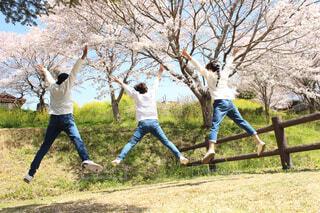 公園でフリスビーをする人々のグループの写真・画像素材[4299614]