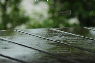 傘を閉じるの写真・画像素材[4464495]