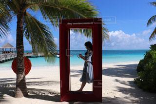 ヤシの木のある浜辺の人々のグループの写真・画像素材[2428768]