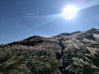 山の上に乗る男の写真・画像素材[1601084]