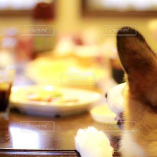 食事,私とごはん,食べたいなー,ご飯の誘惑,ハナと食事と,日曜日の朝食