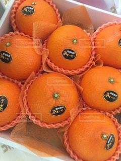 テーブルの上に座っているオレンジの山の写真・画像素材[1784869]