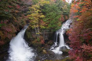 自然,紅葉,日光,滝
