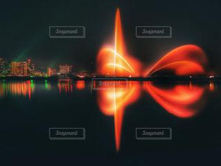 湖面を舞う蝶の写真・画像素材[2758075]