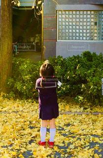 子ども,秋,落ち葉,未来,夢,希望,いちょう,可能性