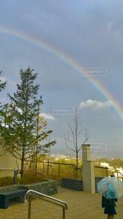傘,青空,虹,未来,朝,雨上がり,夢,ポジティブ,目標,可能性