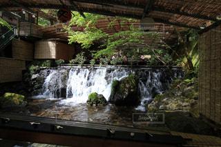 建物の側に木の滝の写真・画像素材[706402]