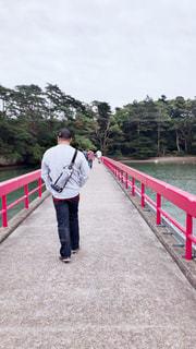 男性,1人,後ろ姿,男,観光,仙台,松島,福浦橋,福浦島