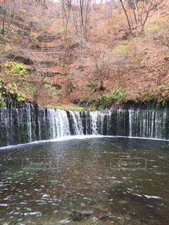 自然,水面,滝,樹木,日中