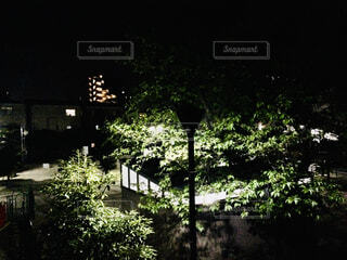窓からの風景の写真・画像素材[4338229]