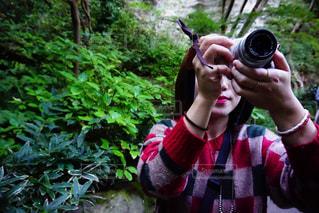カメラ,屋外,緑,鮮やか,写真,未来,鎌倉,思い出,夢,ポジティブ,報国寺,可能性