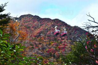 自然,風景,秋,紅葉,山,景色,雲仙市,フォトジェニック,仁田峠
