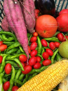 新鮮な彩り野菜を是非の写真・画像素材[1581298]