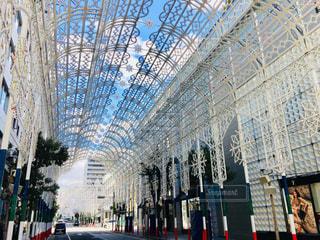白,美しい,クリスマス,装飾,神戸,ホワイト,関西,兵庫県,ルミナリエ,神戸市,白い道,色・表現