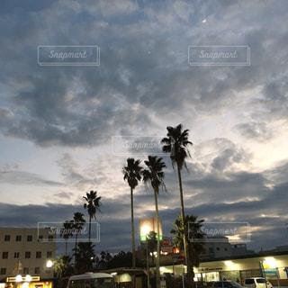 空の写真・画像素材[234978]