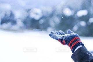雪の上の人の写真・画像素材[1796664]