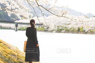 水の体の横に立っている人の写真・画像素材[1832420]