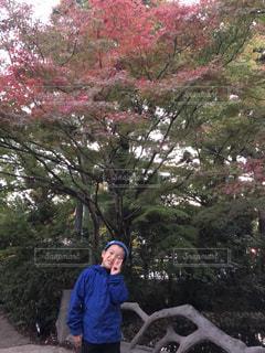 紅葉,スマイル,もみじ,寒い,紅葉狩り,香嵐渓,足助,まだ早い