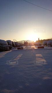 自然,風景,空,公園,冬,雪,屋外,太陽,朝日,白,日の出,ホワイト