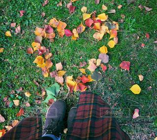 秋の落ち葉でハートの写真・画像素材[1616843]