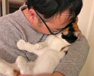 猫,動物,仲良し,ペット,人物,抱っこ,ネコ,中年男性