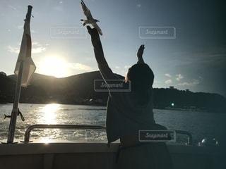 海,北海道,未来,カモメ,小樽,夢,ポジティブ,羽ばたく