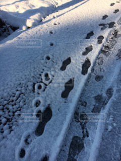 雪の朝。足跡が点々と…の写真・画像素材[1679121]