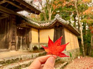 秋の京都。高雄 神護寺。の写真・画像素材[1682108]