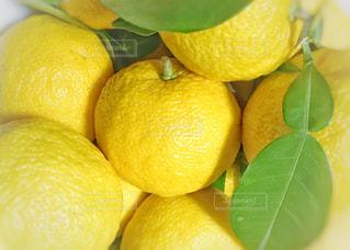 食べ物,植物,黄色,ゆず,果実,イエロー,新鮮,柚子,黄,食材,yellow