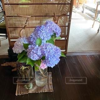玄関を彩る紫陽花の写真・画像素材[3376494]