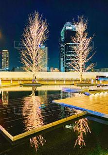 空,夜景,水面,光,樹木,イルミネーション,LED,けやき,グランフロント大阪,シャンパンゴールド,GRAND FRONT OSAKA