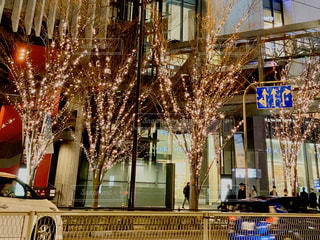 車道,街,光,イルミネーション,LED,灯,グランフロント大阪,北館,シャンパンゴールド