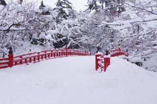自然,冬,橋,雪,白,青森,ホワイト,赤い