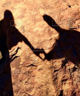 岩の上を歩く猫の写真・画像素材[1589483]