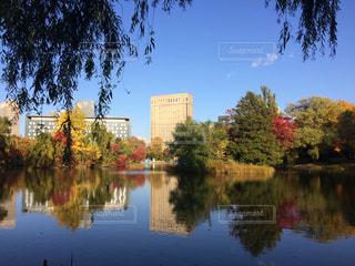 自然,空,公園,秋,紅葉,木,葉っぱ,水面,もみじ,池,北海道,札幌