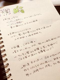 ノート,メモ,手書き,ライフスタイル