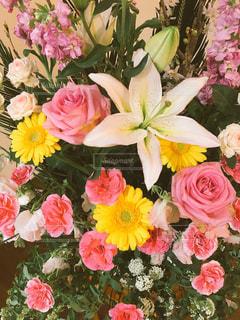 お祝いの花束の写真・画像素材[2008052]
