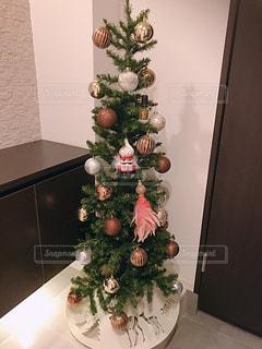 クリスマスツリーの写真・画像素材[1634642]