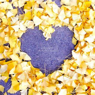公園,秋,紅葉,黄色,葉,ハート,ハートマーク,恋,草木,マーク
