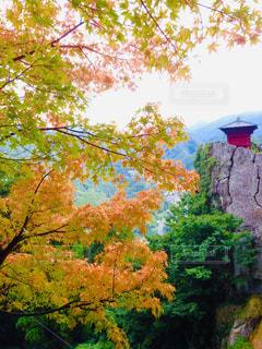 山寺の写真・画像素材[1639577]