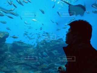 男性,魚,青,水族館,男,デート,仙台,12月,夫,仙台うみの杜水族館,40代