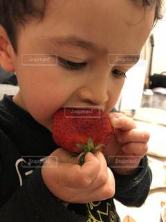 緑,赤,いちご,苺,フルーツ,人物,大きい,人,男の子,フレッシュ,フレッシュフルーツ