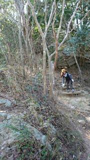 神戸でハイキング!の写真・画像素材[2244631]