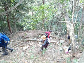 神戸でハイキング!の写真・画像素材[2244632]
