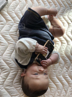 スマホをかじる赤ちゃんの写真・画像素材[2284982]