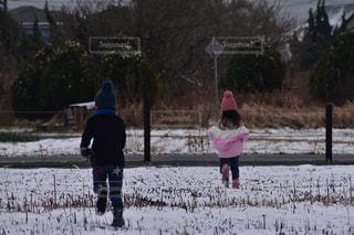 冬,雪,後ろ姿,子供,女の子,人物,人,後姿,男の子