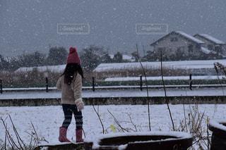 冬,雪,後ろ姿,子供,女の子,人物,人,後姿