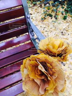公園,花,秋,花束,葉っぱ,黄色,ブーケ,イチョウ,銀杏,お出かけ