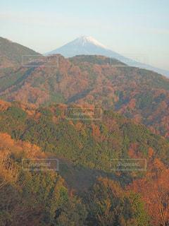 富士山と紅葉の写真・画像素材[1607730]