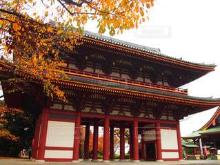 お寺と紅葉のコラボの写真・画像素材[1644468]
